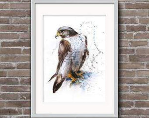 Beautiful Print ideas for him created by a British Artist - falcon - gift for him