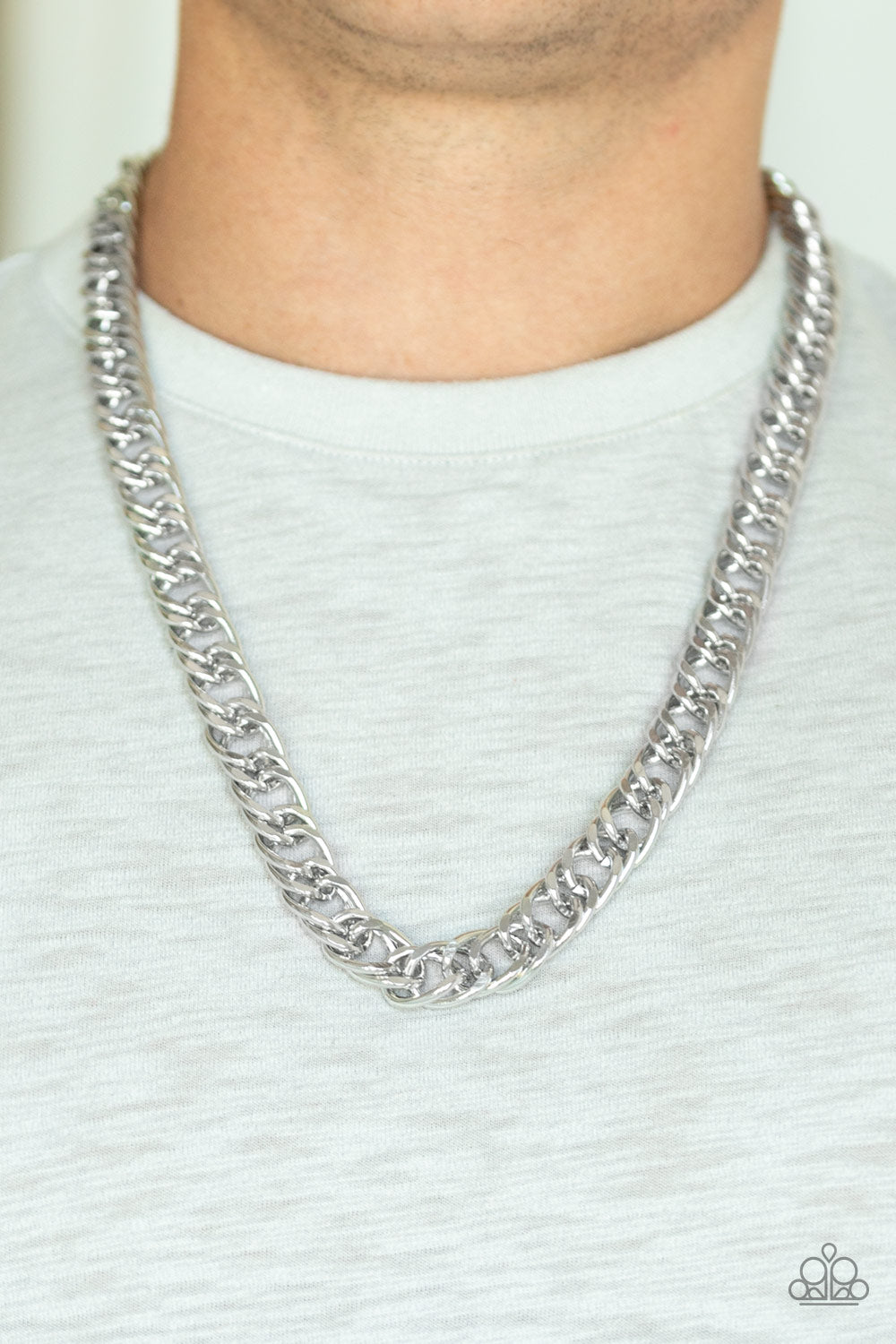 Paparazzi - Omega - Silver Necklace - Classy Jewels by Linda