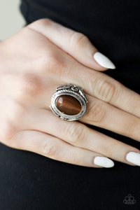 Paparazzi - Deep Freeze - Brown Ring - Classy Jewels by Linda