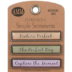 Simple Sentiments - Picture Perfect/Perfect Day/Capture