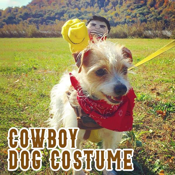 Riding Horse Dog Cowboy Costume with Hat