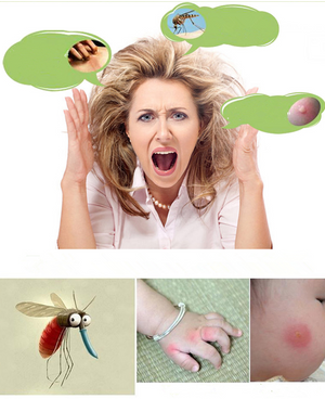Natural Insect Repellent Essential Oil