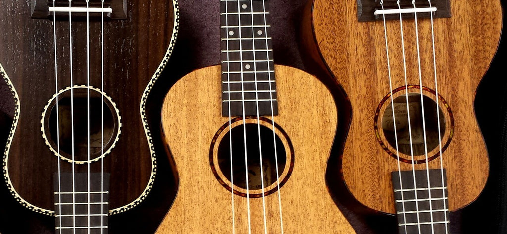 Which Ukulele Size is Right For You?