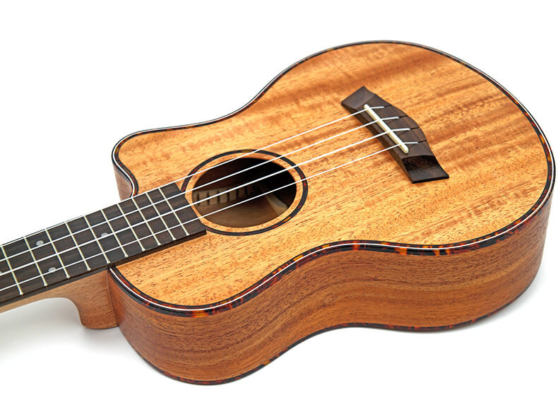 Recloud Concert Acoustic Electric Ukulele 23/26 Inch  Mahogany
