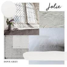 Load image into Gallery viewer, DOVE GREY JOLIE PAINT