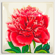 Load image into Gallery viewer, Decoupage Glass Tray | Ben's Garden
