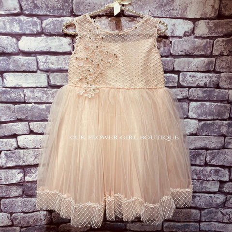 Phoebe Dress - Pink Ribbons and Lace