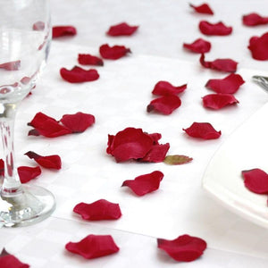 Red petals on a white table cloth