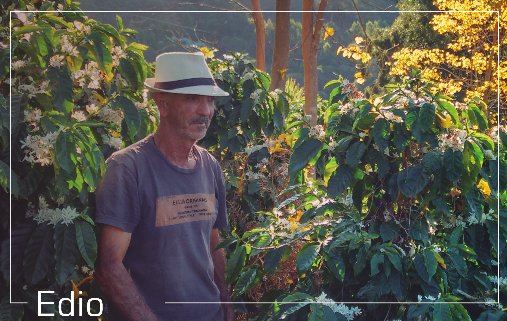 Meet Edio Miranda, one of our coffee growers based in the mountains of Araponga, Brazil.