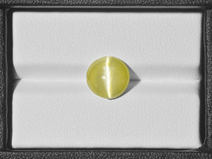 8801042-cabochon-intense-greenish-yellow-igi-india-natural-chrysoberyl-cat's-eye-4.89-ct