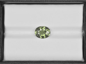 8800654-oval-olive-green-aigs-madagascar-natural-other-fancy-sapphire-2.16-ct