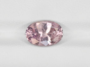 8800350-oval-pastel-pink-with-slight-orangish-hue-igi-sri-lanka-natural-padparadscha-2.83-ct