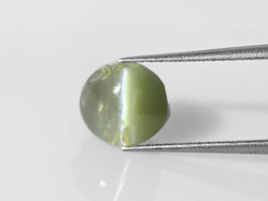 8800310-cabochon-intense-green-changing-to-greenish-brown-igi-india-natural-alexandrite-cat's-eye-3.15-ct