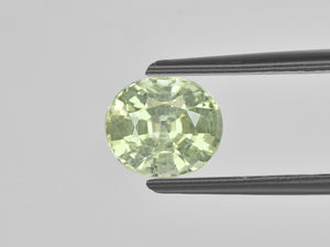 8800673-oval-pastel-yellow-green-igi-madagascar-natural-other-fancy-sapphire-2.52-ct