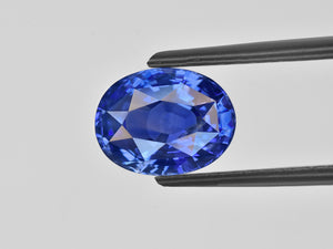 8801162-oval-lustrous-cornflower-blue-gia-madagascar-natural-blue-sapphire-3.14-ct