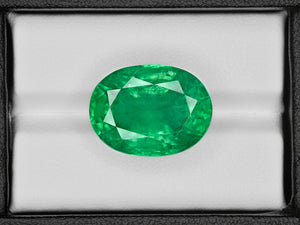 8801051-oval-lustrous-intense-green-grs-zambia-natural-emerald-24.48-ct