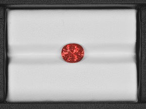 8801364-oval-fiery-rich-pinkish-orange-grs-madagascar-natural-padparadscha-2.55-ct
