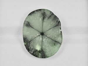 8802117-cabochon-light-green-with-black-spokes-igi-colombia-natural-trapiche-emerald-10.35-ct