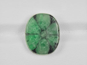 8802125-cabochon-green-with-black-spokes-igi-colombia-natural-trapiche-emerald-9.55-ct