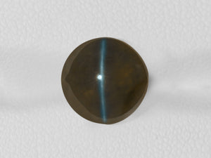 8802537-cabochon-dark-brown-igi-india-natural-chrysoberyl-cat's-eye-7.69-ct