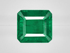 8802923-octagonal-rich-intense-green-igi-zambia-natural-emerald-8.30-ct
