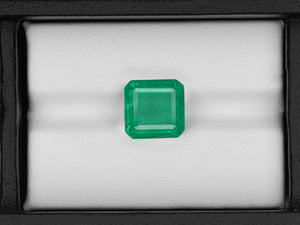8802915-octagonal-lively-intense-green-igi-zambia-natural-emerald-5.21-ct