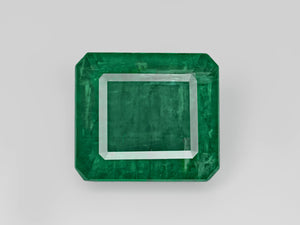 8803117-octagonal-intense-green-gii-zambia-natural-emerald-20.00-ct