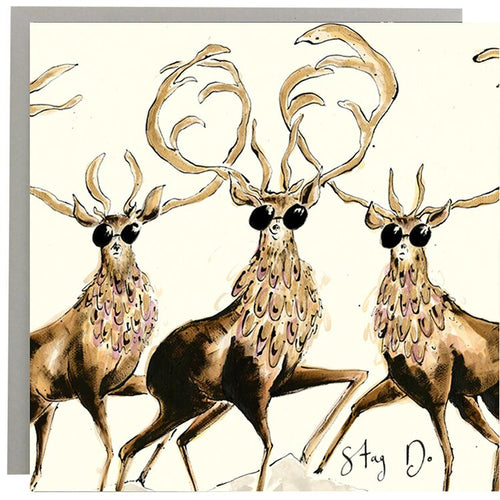 Stag Do  Greeting Card