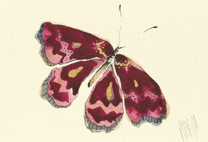 """Dark Pink Butterfly""  Extra Mini Signed Print"