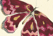 "Load image into Gallery viewer, ""Dark Pink Butterfly""  Extra Mini Signed Print"