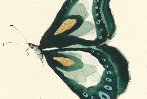 """Emerald Butterfly""  Extra Mini Signed Print"
