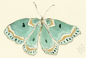 """Turquoise Butterfly""  Extra Mini Signed Print"