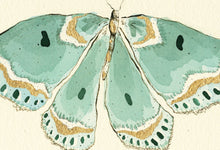 "Load image into Gallery viewer, ""Turquoise Butterfly""  Extra Mini Signed Print"