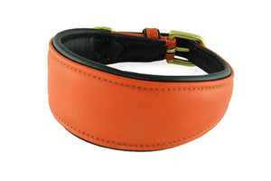 Windhund-Halsband (Fashion): gepolstert, Vollrindleder + Messing