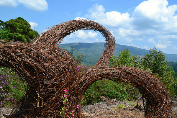 Environmental art sculpture created by Amy Reader in the Amazon rainforest in Peru using natural wooden materials sourced from the mountain top where the sculpture currently stands.