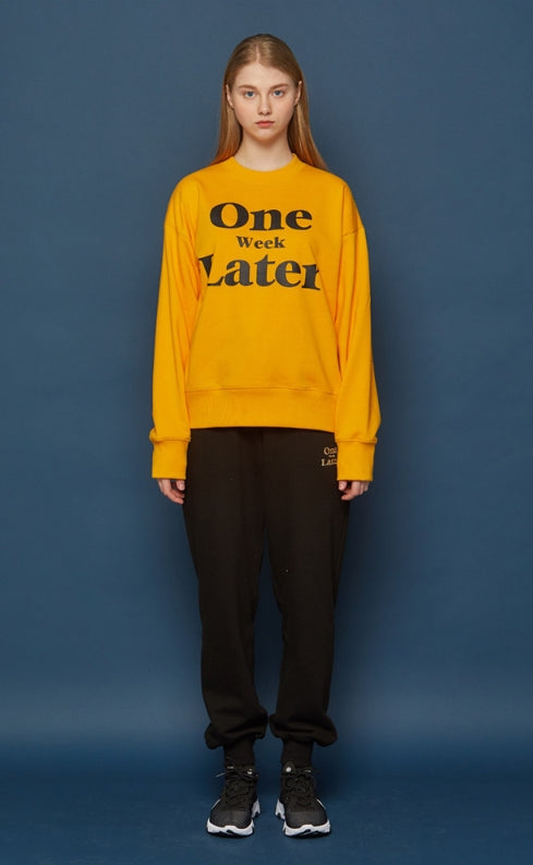スローアシッド(SLOW ACID) OWL Sweatshirt (YELLOW)