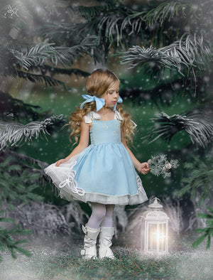 ALICE WHIMSICAL DRESS