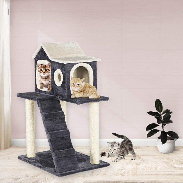 35 inches Cat Tree Play Condo Scratching Posts and Climbing Tree Furniture (Free Gifts)