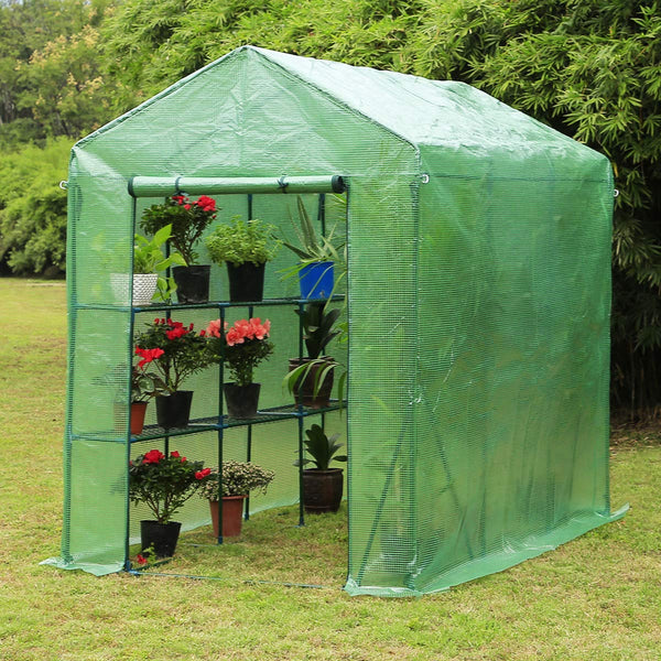 "Walk-in Greenhouse, Indoor Outdoor Plant Gardening, 2 Tier 6 Shelves Hot House for Flowers, Plants and Vegetables 56""x 84"" x 77"", Green"