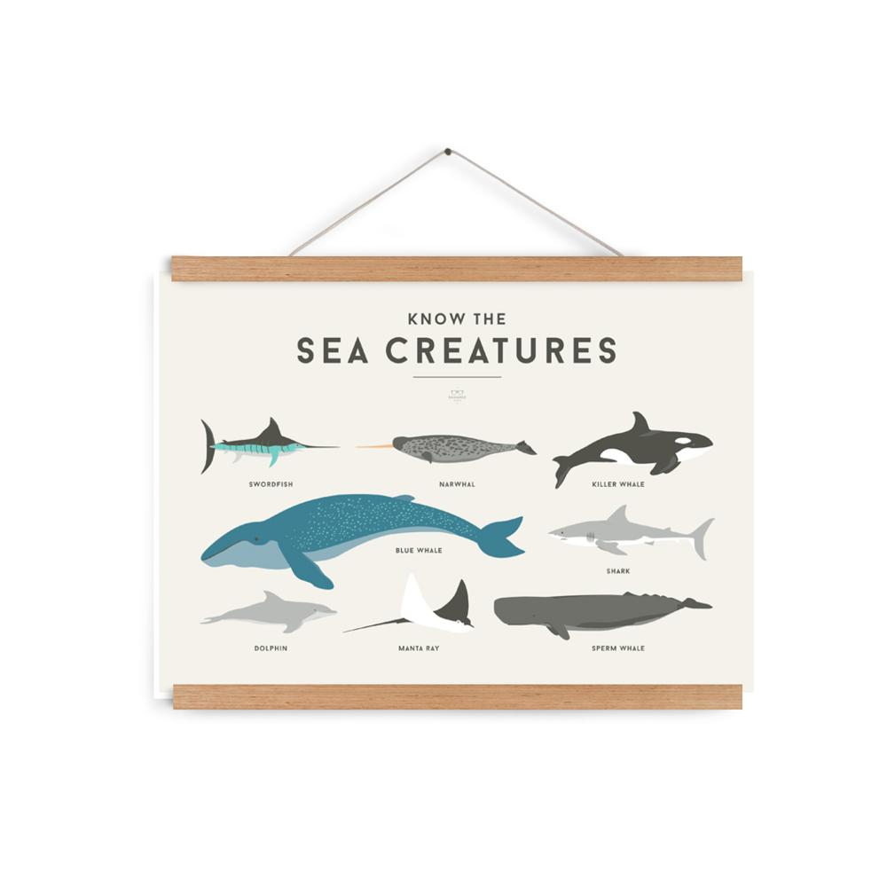 We Are Squared - Sea Creatures Poster For Kids