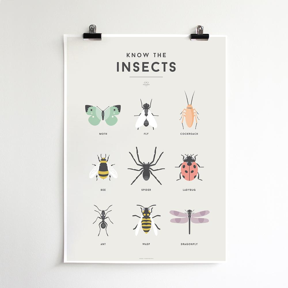 We Are Squared - Insects Poster For Kids