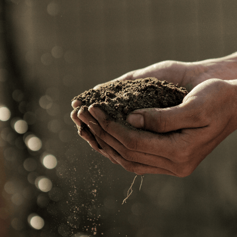 Farmer clasping a handful of soil
