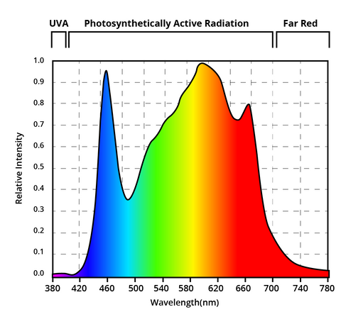 800W Full Spectrum LED PAR Graph