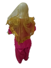 Punjabi Folk Dance Costume Giddha (Multicolor) for Girls and Females