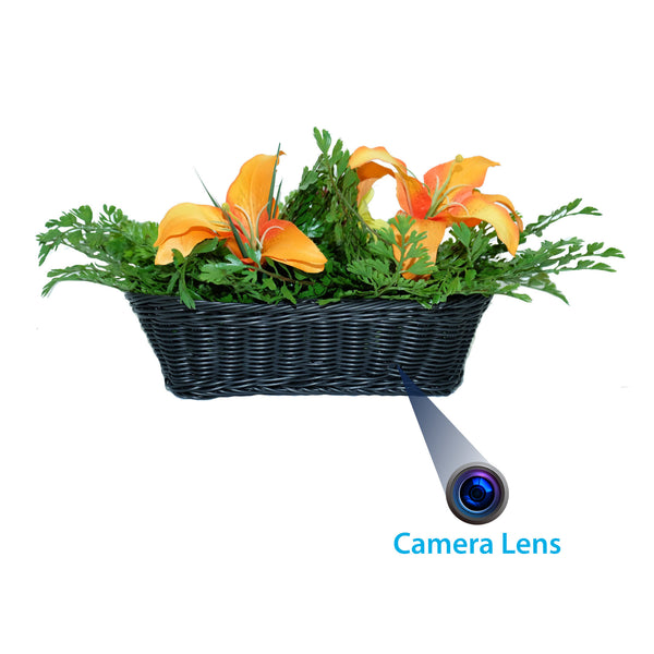 1080p Fern Hidden Wi-Fi Camera