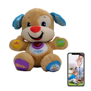 Stuffed Animal Nanny Cam