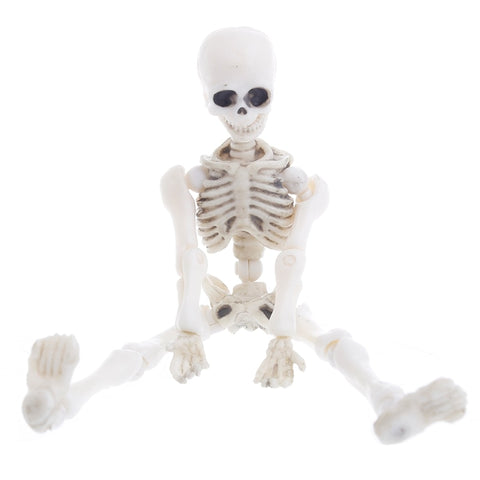 Image of Moveable Mr Bones Mini Model