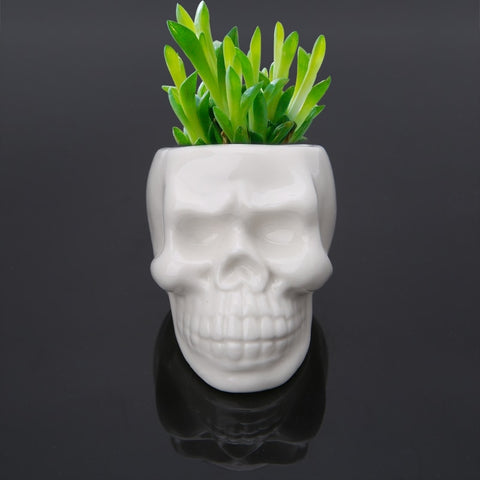 Image of Saba Skull Ceramic Planter