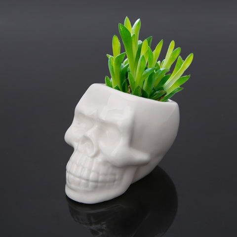 Saba Skull Ceramic Planter