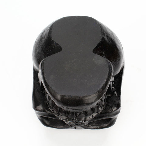 Bella 3D Skull Storage Holder